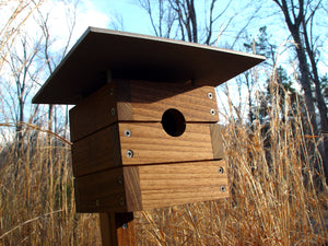 Richard Modern Birdhouse