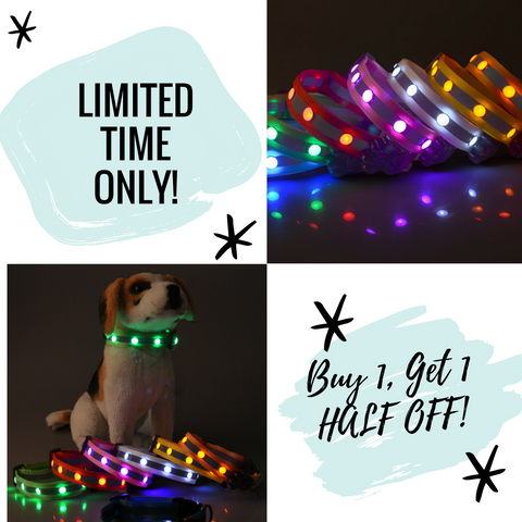 New Design Quality Bright LED Reflective Dog Collar - Buy One, Get One 1/2 OFF (BOGO) - FUNKYDOGGIE