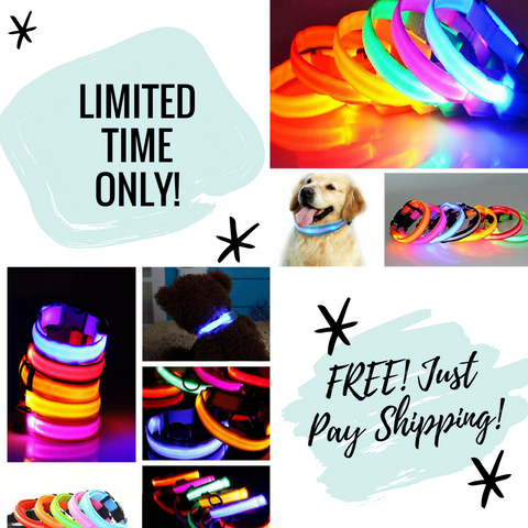 Premium Glow In The Dark LED Dog Safety Collar - FREE! Just Pay Shipping!
