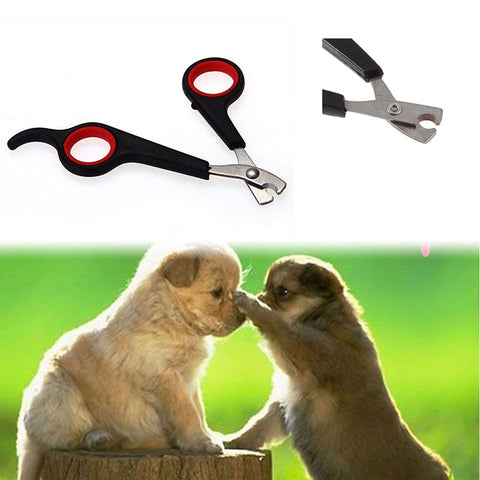 Nail Claw Grooming Scissors Clippers For Dog - FUNKYDOGGIE