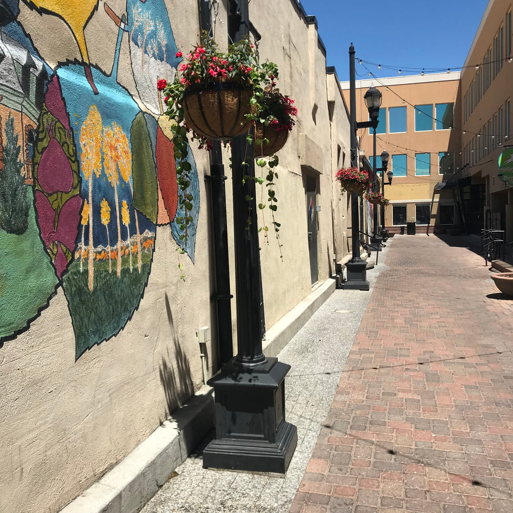 hanging potted plants in Old Town, Fort Collins, Colorado