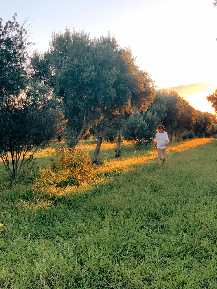 Molly Dunkle in olive grove at Macintyre Brook Grove