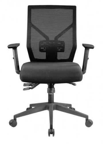 Ergonomic 4 Lever Chair