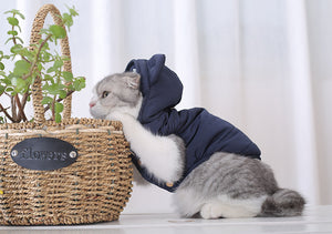 Padded Hoodie | Cat Sweater