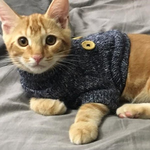Buttoned Blue | Cat Sweater