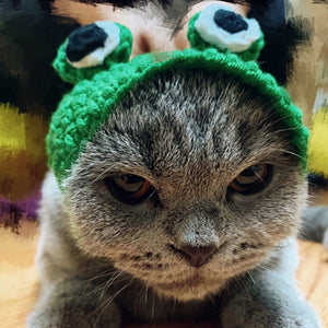 Knitted Frog Hat | Cat Costume