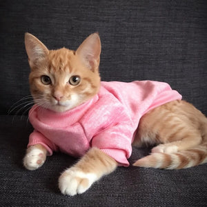 Idepet | Cat Sweater