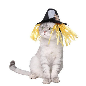 Scarecrow | Cat Costume