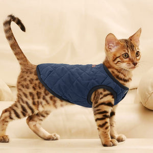 Winter Vest | Cat Sweater