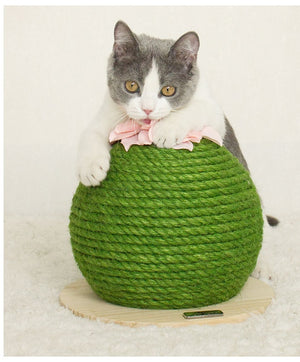 Cat Scratching Board Prickly Pear