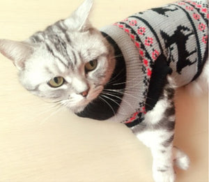 Christmas Cat Sweaters - Only Cat Shirts