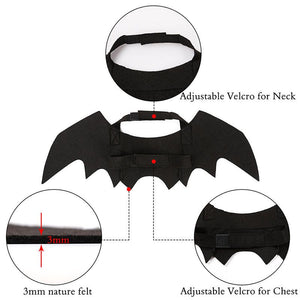 Bat Wings | Cat Costume