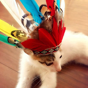 Feather Headgear | Cat Costume