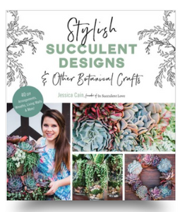 Stylish Succulent Designs