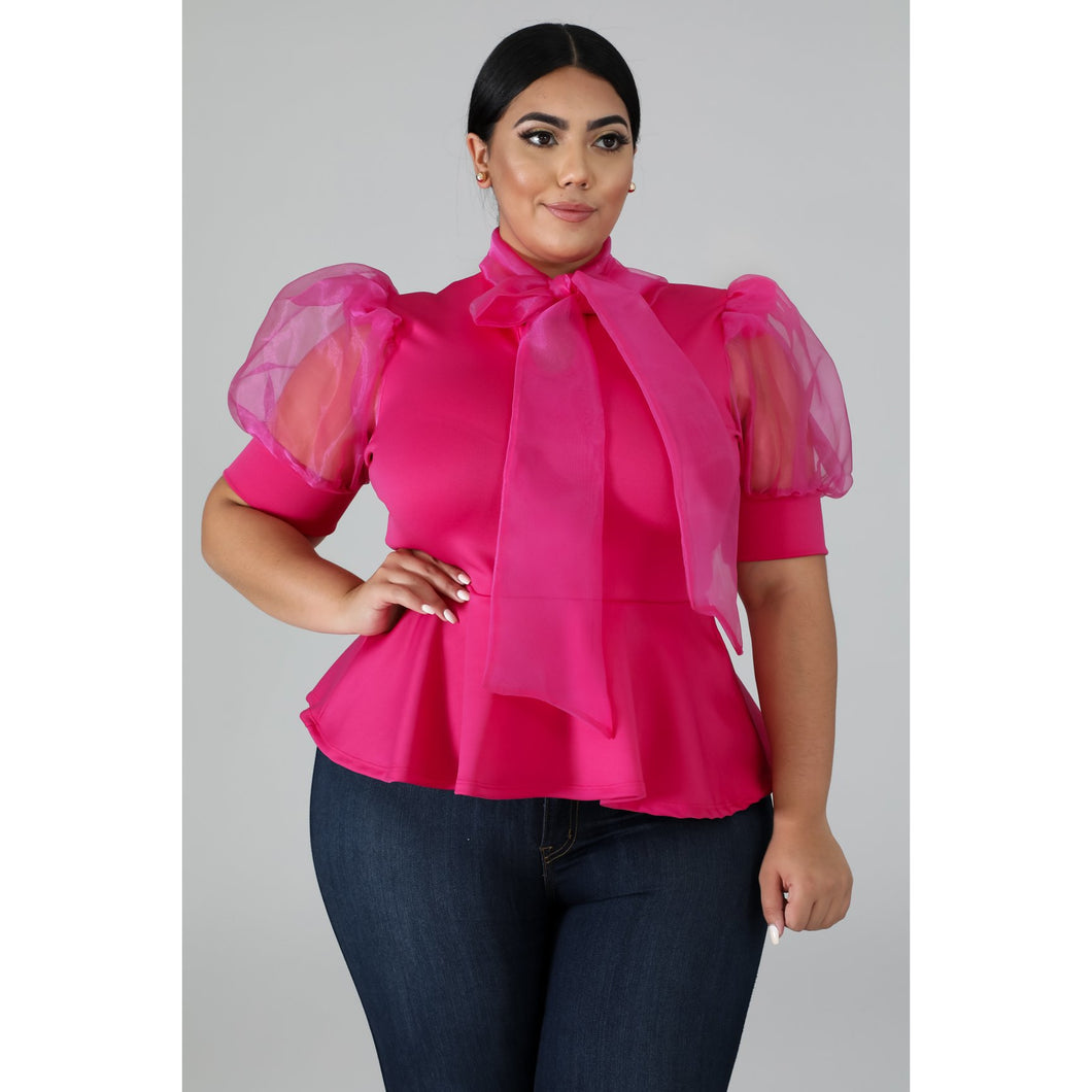 Sheer Puff Top - Kurvacious Boutique