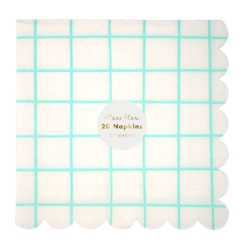 Mint Gingham Large Napkins