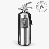 Fire extinguisher 2kg Steel