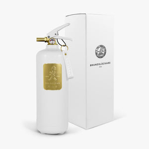 Fire extinguisher 2kg White / Gold
