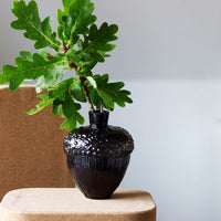 Robur Vase Black