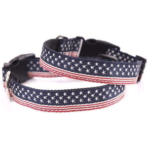 Rubio Rules | American Flag Nylon Collar | Dog Supplies