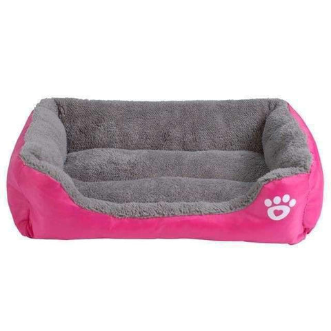 Bed With Paw Print - Fushia / S - Beds
