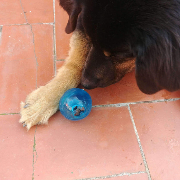 Interactive Treat Dispensing Ball Blue