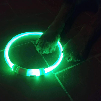Led Light Collar (Usb Chargeable) - Green / L - Collar
