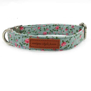 Rubio Rules | Roses Collar | Dog Supplies