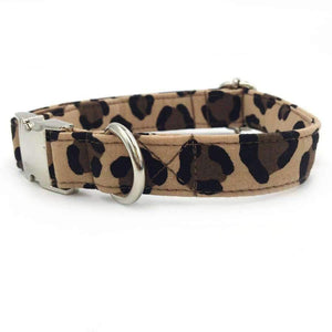 Rubio Rules | Leopard Collar | Dog Supplies