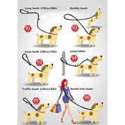 Rubio Rules | Truelove™ Reflective Mesh Hands-Free Leash | Dog Supplies