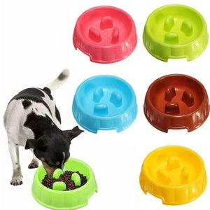 Rubio Rules | Portable Plastic Slow Feeder Bowl | Dog Supplies