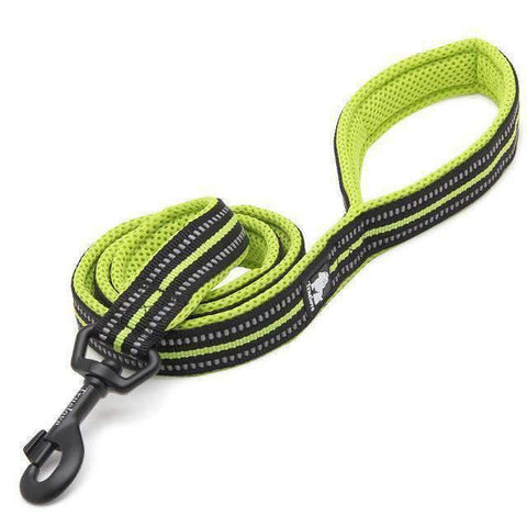 Rubio Rules | Truelove™ Reflective Mesh Leash | Dog Supplies
