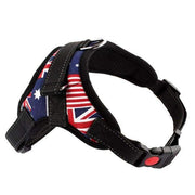 Rubio Rules | Strong Harness with Reflective Stripe | Dog Supplies