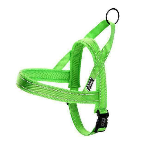 Rubio Rules | Reflective Harness With Leash With 2 Handles | Dog Supplies