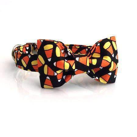 Rubio Rules | Funky Halloween Collar with Bow Tie | Dog Supplies