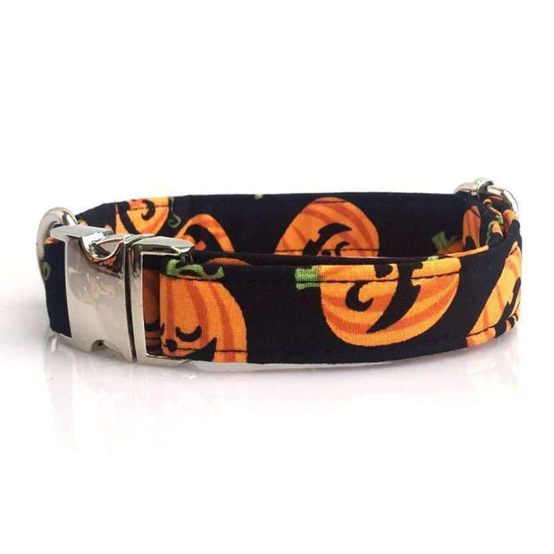 Rubio Rules | Halloween Pumpkins Collar with Bow Tie | Dog Supplies
