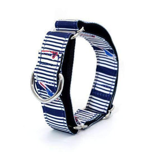 Rubio Rules | Collar Stripes Art | Dog Supplies