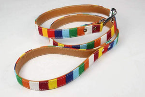 Rubio Rules | Rainbow Leash | Dog Supplies