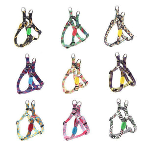 Rubio Rules | California Sunshine Harness Collection | Dog Supplies