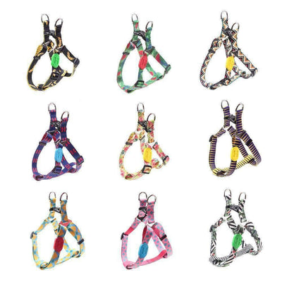 California Sunshine Harness Collection