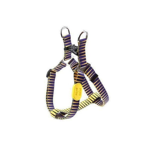 California Sunshine Harness Collection - Pharaoh / L