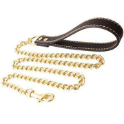 Rubio Rules | Gold Metal Chain Leash with Leather Handle | Dog Supplies