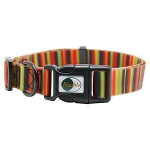 Rubio Rules | Collar with Color Stripes | Dog Supplies