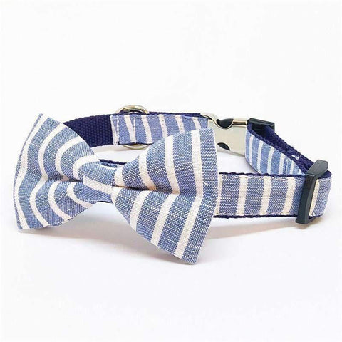 Rubio Rules | Blue Striped Collar with Bow Tie | Dog Supplies
