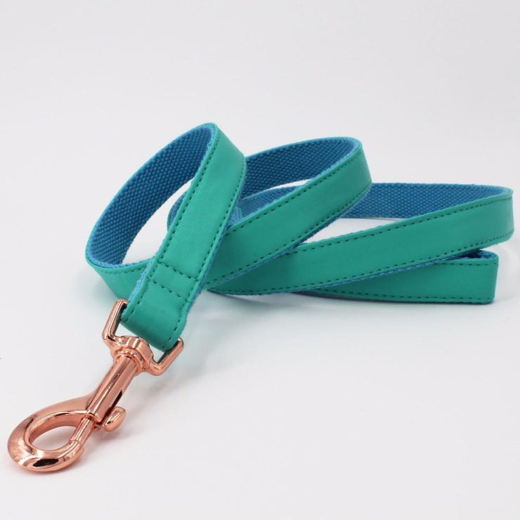 Turquoise Leather Leash