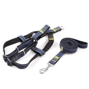 Rubio Rules | Jeans Harness with Leash | Dog Supplies
