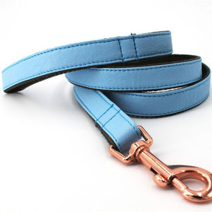 Light Blue Leather Leash