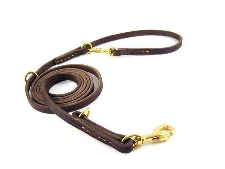 Rubio Rules | Hands-Free Leather Leash | Dog Supplies