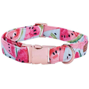 Rubio Rules | Watermelon Collar | Dog Supplies