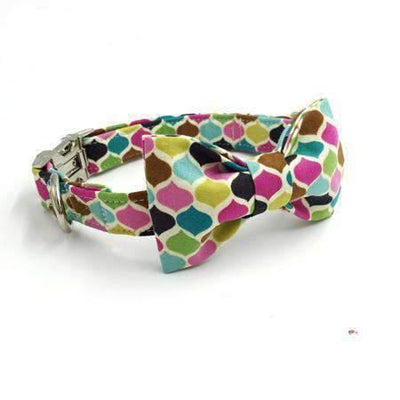 Rubio Rules | Color Drops Collar with Bow Tie | Dog Supplies